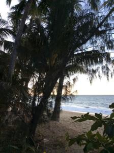 ellis beach